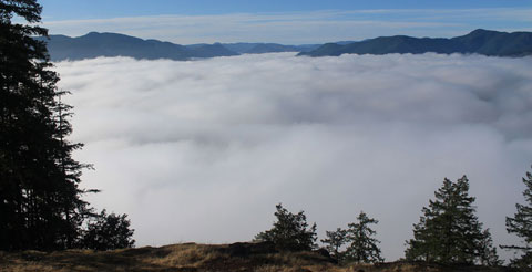 Temperature inversion at dawn - Lake Cowichan